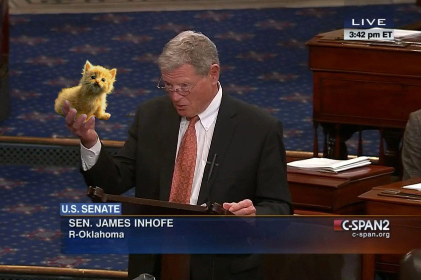 snowball-james-inhofe-kitten